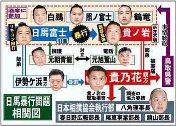 相撲協会相関図.jpg